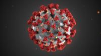 Koronavirus - informace pro zákazníky